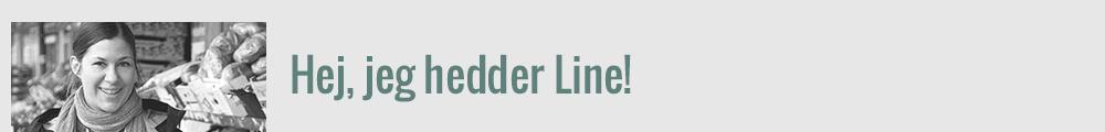 Om Line og bloggen: Hej, jeg hedder Line! Foto: Nils Meilvang